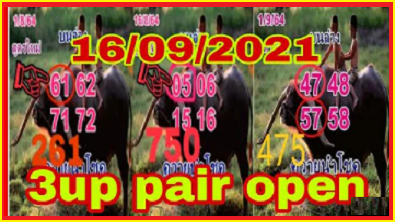 Thailand Lottery Formula 3up Pair Open Single Digit 16/9/2021